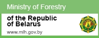 http://mlh.gov.by/en/forestry/resources.html